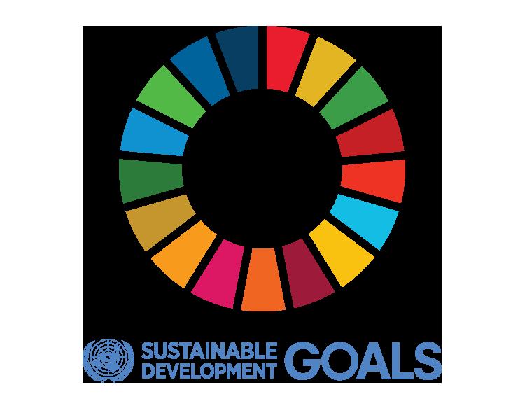 UN SDG Logo.png